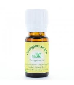 Ätherisches BIO-Öl Eukalyptus smithii - 10ml - Nabio