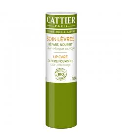 BIO-Lippenpflege Olive & Mango - 4g - Cattier