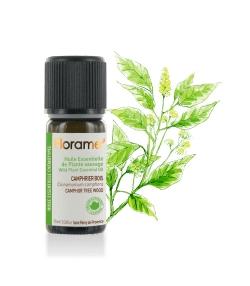 Ätherisches Öl Kampferholz aus Wildsammlung - 10ml - Florame