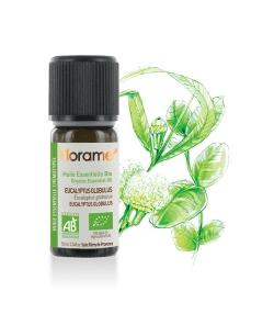 Ätherisches Öl BIO-Eukalyptus globulus - 10ml - Florame