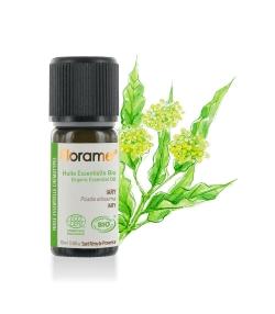 Ätherisches Öl BIO-Iary - 10ml - Florame
