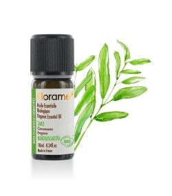 Ätherisches Öl BIO-Saro - 10ml - Florame