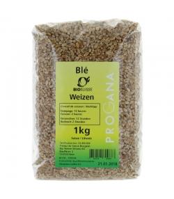 BIO-Weizen - 1kg - Progana