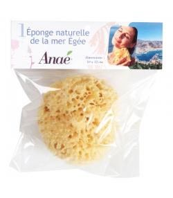 Éponge naturelle petite - 1 pièce - Anaé