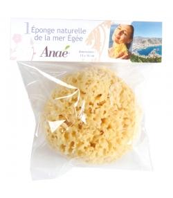 Éponge naturelle grande - 1 pièce - Anaé