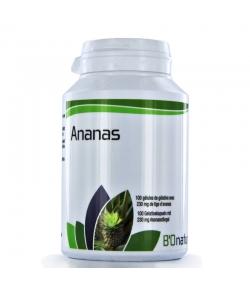 Ananas - 100 Kapseln 230mg - BIOnaturis