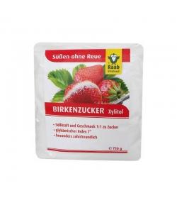 Birkenzucker Xylitol Pulver - 750g - Raab Vitalfood