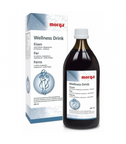 Eisen Wellness Drink - 380ml - Morga