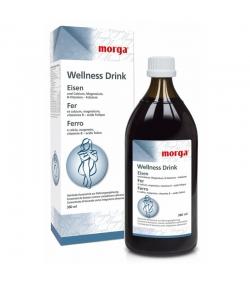 Wellness Drink Fer - 380ml - Morga