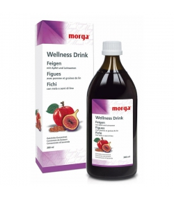 Wellness Drink Figues - 380ml - Morga