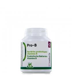 Pro-B 4,8 milliards de bactéries probiotiques + vitamine B 120 gélules - BIOnaturis