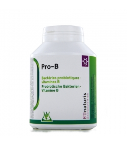Pro-B 4,8 milliards de bactéries probiotiques + vitamine B 240 gélules - BIOnaturis