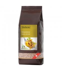 Grains de blé BIO - 1kg - Biofarm