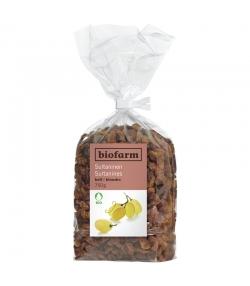 Raisins secs jaunes BIO - 750g - Biofarm