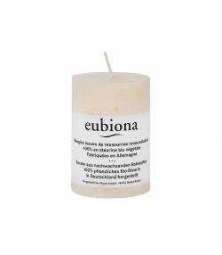 Bougie cylindrique ivoire en stéarine BIO 56 x 80 mm - 1 pièce - Eubiona