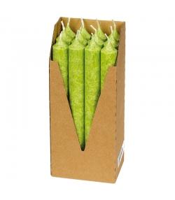Stabkerzen Grün aus BIO-Stearin 22 x 210 mm - 12 Stück - Eubiona