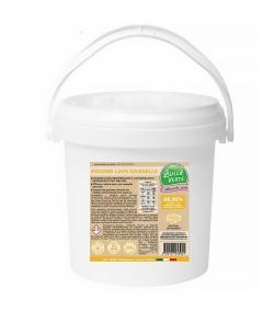 Ökologisches Geschirrspülmaschinen-Pulver Zitrone & Minze - 80 Waschgänge - 1kg - Bulle Verte
