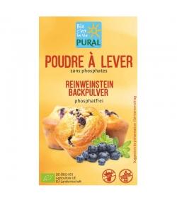 BIO-Reinweinstein Backpulver phosphatfrei - 3x21g - Pural
