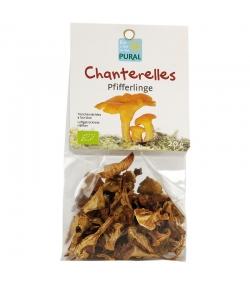 Chanterelles séchées BIO - 20g - Pural