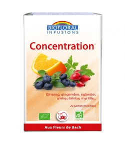 BIO-Kräutertee Konzentration - 20 Beutel - Biofloral