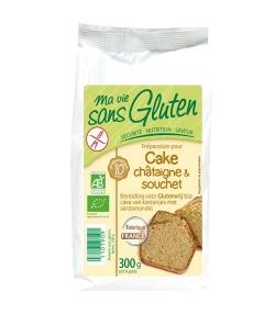 BIO-Vorbereitung Kastanien- und Erdmandelcake - Glutenfrei - 300g - Ma vie sans gluten