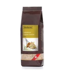 Graines d'avoine BIO – 500g – Biofarm