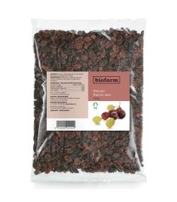 Raisins secs BIO – 750g – Biofarm
