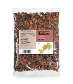 Raisins secs jaunes BIO – 750g – Biofarm
