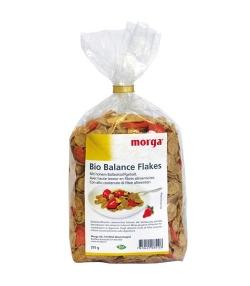 Flocons de fibres & fruits BIO – Balance Flakes – 375g – Morga