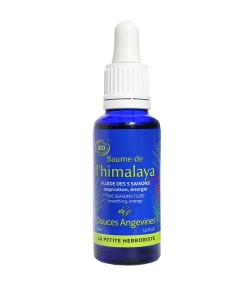 Fluide des 5 saisons BIO ravensara & menthe poivrée – Baume de l'Himalaya – 30ml – Douces Angevines